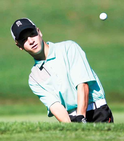 High school golf: Hornets, Bees advance to districts