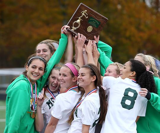 Medina girls crush Brunswick in district soccer final
